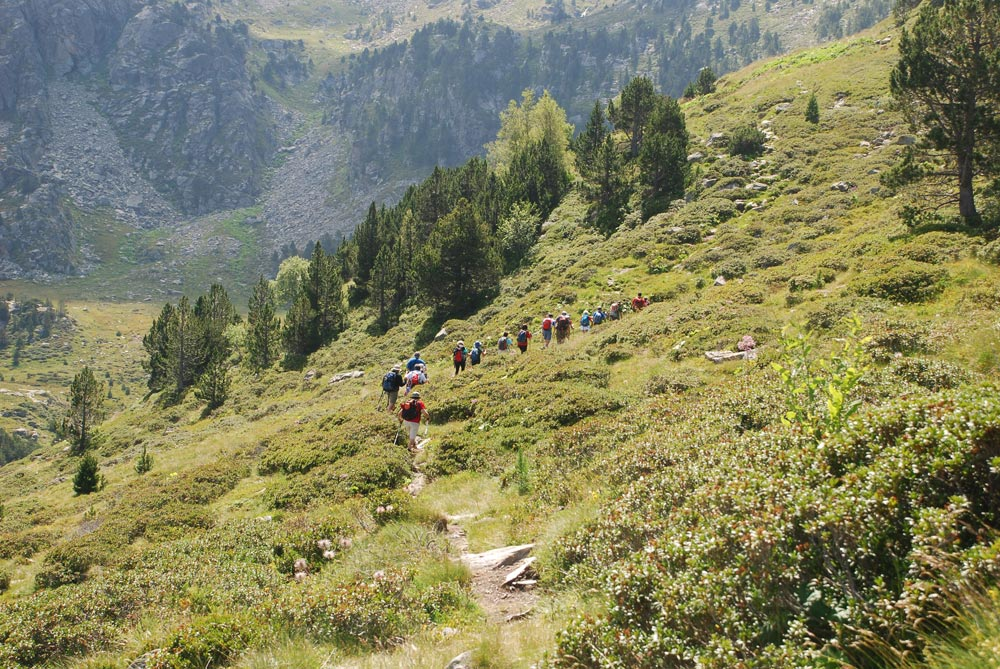 Incles Valley Walking Festival